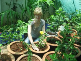 urban farming, Earth Day, Hanna Meiners, The Green Path, volunteering in environment