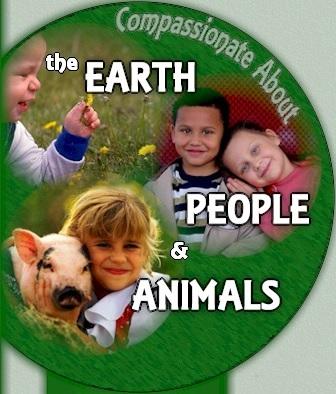 volunteering with children, compassionate kids, teaching giving to children, child volunteers, no age limit for volunteering, #noage4volunteering