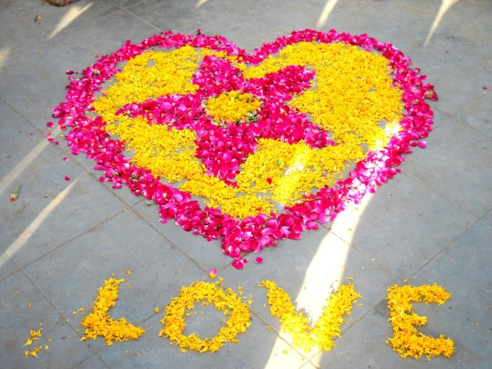 moved by love, seva cafe, random acts of kindness, little acts of kindness, volunteering in India, Vadodara