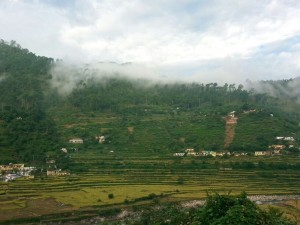 Hill_View