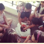 Parenting and Volunteering - easy science experiments with children - what do plants need